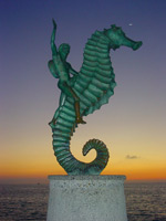 Free High Resolution Photos - Caballito de Puerto Vallarta